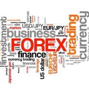 Forex Market Season