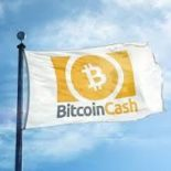 BitcoinCash (BCH) Review – What is Bitcoin Cash?