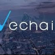 VeChain (VEN) Cryptocurrency Review – Analysis of the Vechain platform